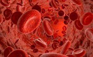Заболевания тромбоцитов