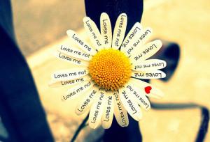 Как проверить что тебя любят