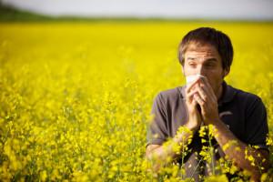 аллергия в июне