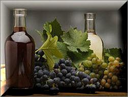 виноградный уксус