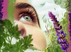 лечение воспаления глаз с помощью народных средств