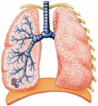 уколы от воспаления легких