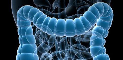 Аллергические поражения кишечника