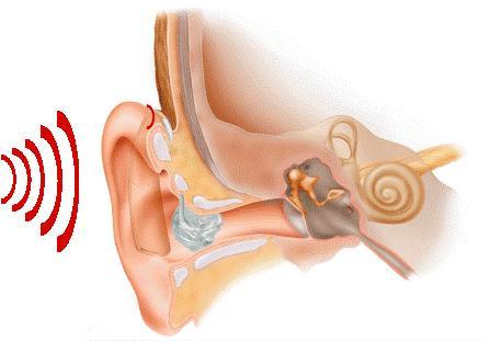 Заболевания слухового канала
