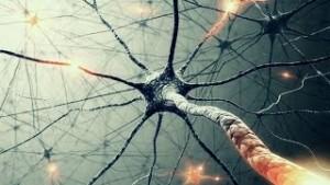 рассеянный склероза и народная медицина
