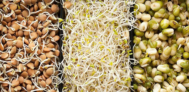 целебные блюда из проросшего зерна